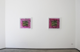 Jonny Briggs, Trying to be a square but never being a square, Installation view