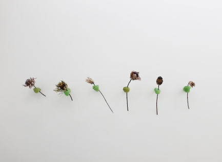 Alix Marie, Proteus offering, Glasswax and Protea flower, Installation view, 2021